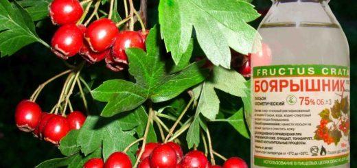 Настойка плодов боярышника